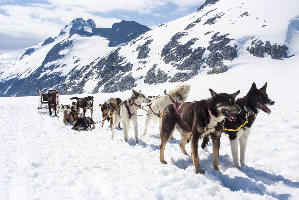 Photo: Global Adventure Challenges