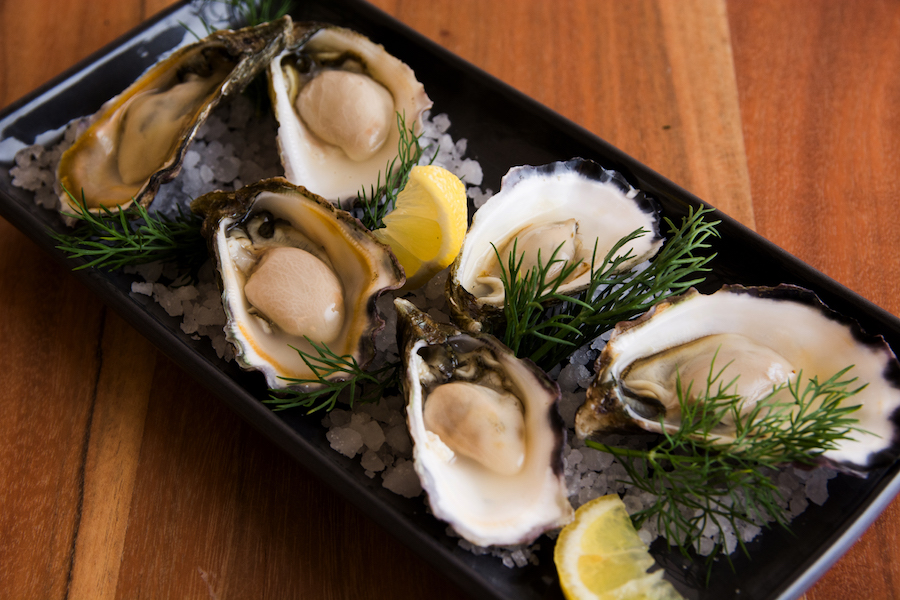 oysters 1.jpg