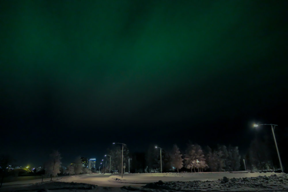 pics of northern lights! the pics don't do it justice!
