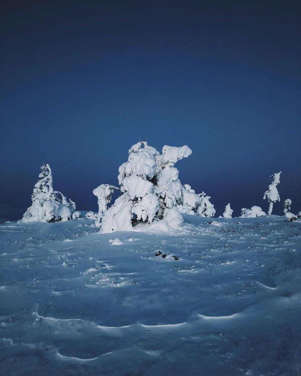 henrik.samuel.winter.levilapland-2.jpg
