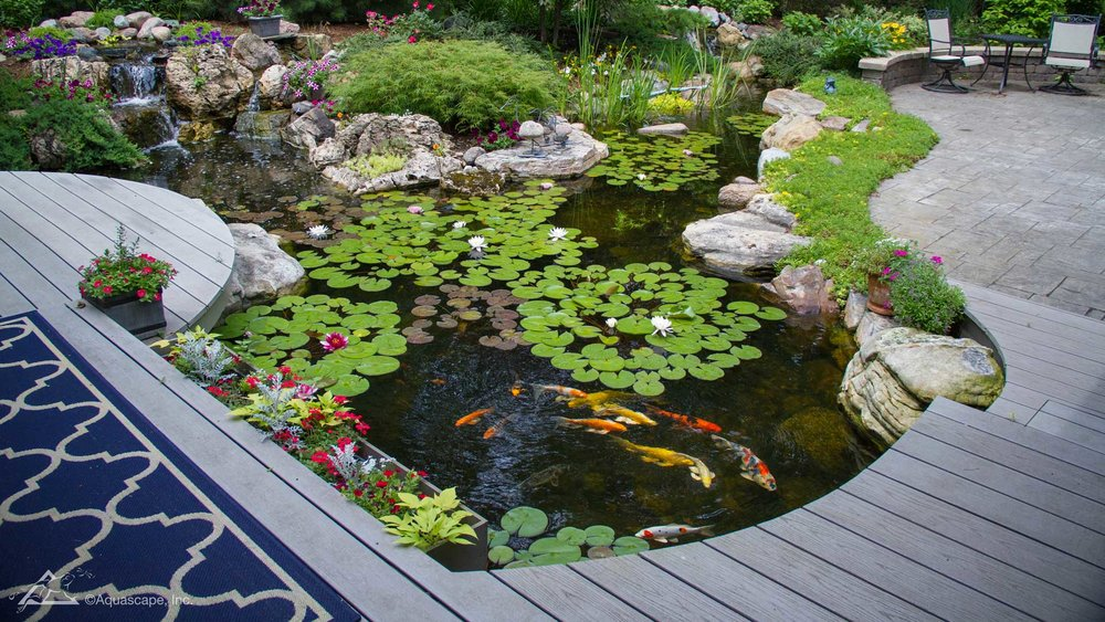 Auburn-Sky-Aquascape-Large-21x26-Pond.jpg
