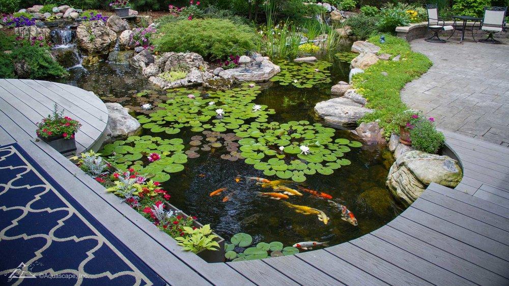 Auburn-Sky-Aquascape-Large-21x26-Pond.jpg