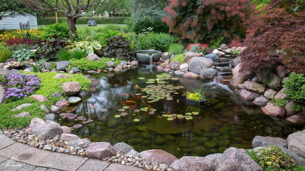 Auburn-Sky-Aquascape-Ecosystem-Pond.jpg