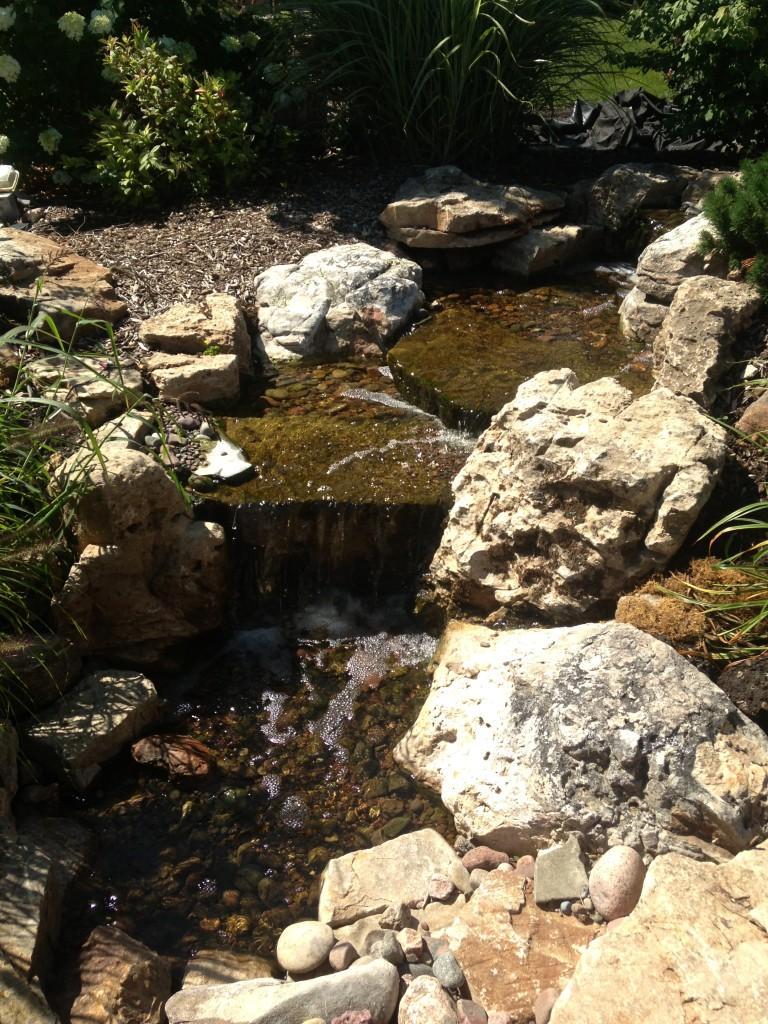 Auburn-Sky-Lincoln-Park-Zoo-Water-Feature.jpg