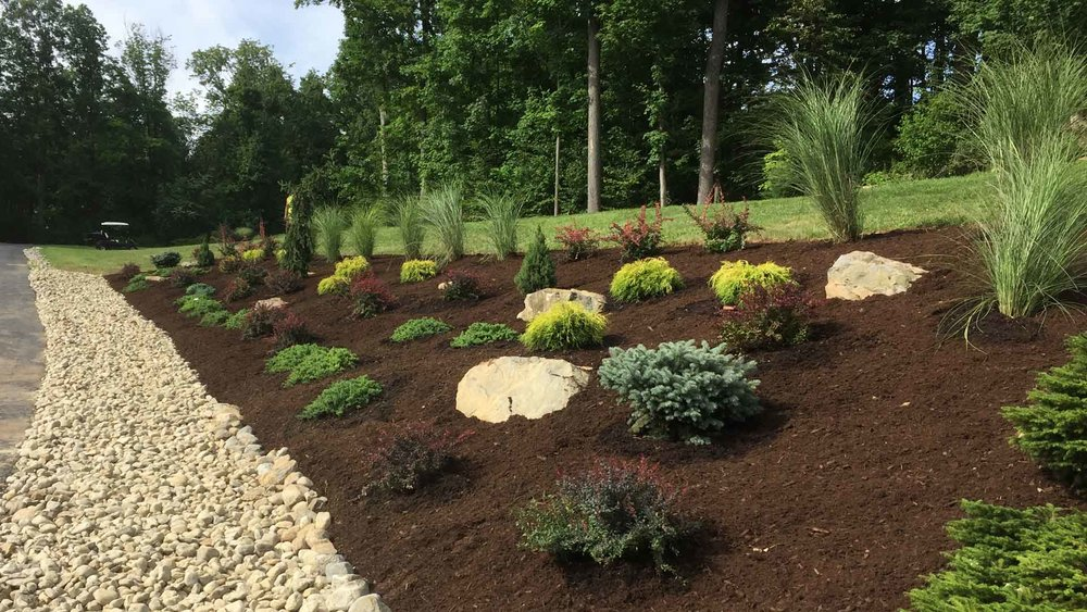 Auburn-Sky-Landscaping-Softscape-Plant-Install-Driveway.jpg