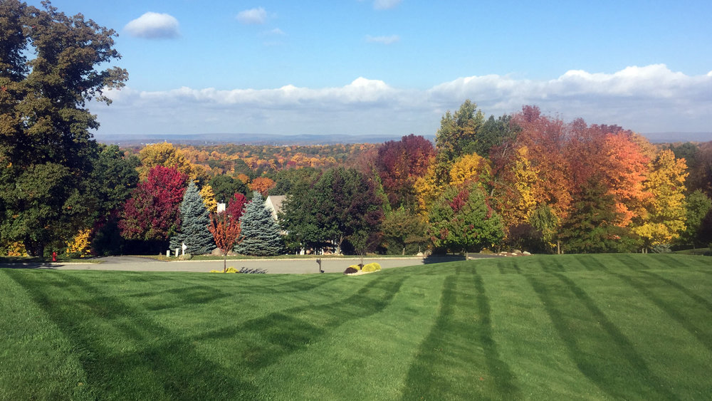 Auburn-Sky-Fall-Lawn.jpg