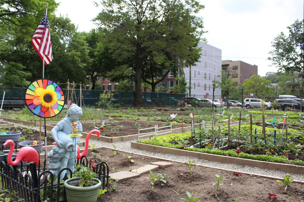 Hoboken Volunteers partnered with the City of Hoboken to rejuvenate and rebuild the Community Garden at 3rd & Jackson Street.
