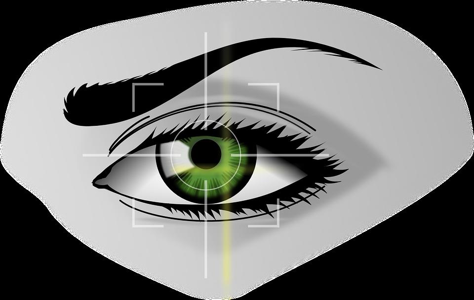 biometrics-154660_960_720.png