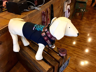 This cute  Barefoot Outfitters tee ($19.95) is super casual and will keep your pup looking sharp. Also in this photo is a Texas State collar ($14.95) and leash ($15.95) because every member of the family should be able to show his collegiate pride.