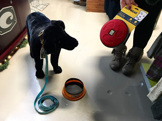 This pooch might not be real, but he still knows a good toy when he sees one. Grab this frisbee from  Hays County Outfitters for $25. (Also pictured is a collapsible dog bowl for $24.95, and a Chaco brand leash for $29.95.)