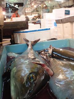 Japanese-Fish-Market-Toyko-Angela-Sun-Chasing-A-Sun-3.JPG