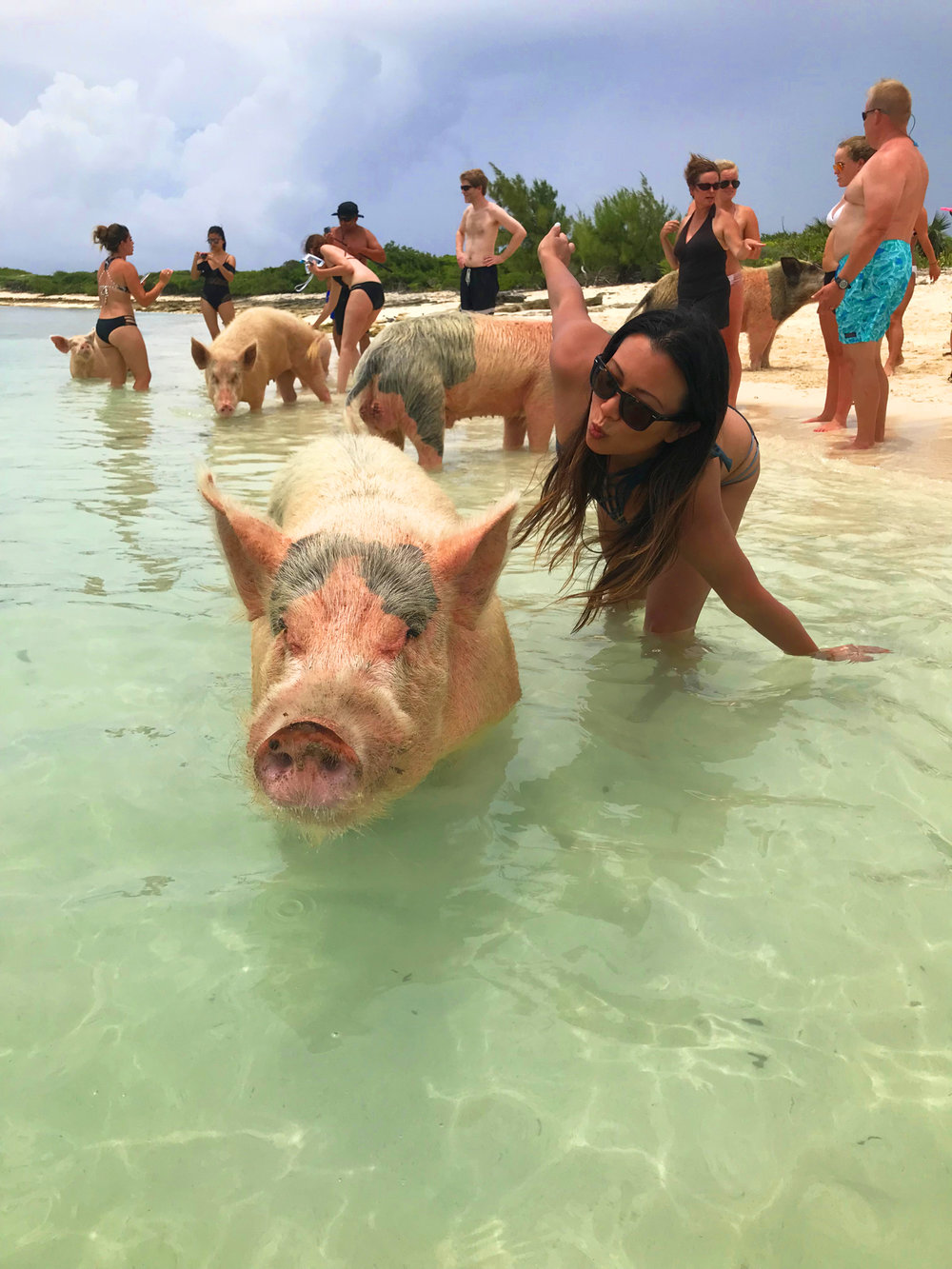 Chasing-A-Sun-Swimming-Pigs-Exuma-Bahamas-Angela-Sun-4.jpg