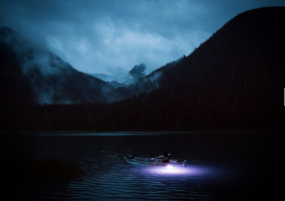 Night Kayak Tour. photo: courtesy The Wild Society