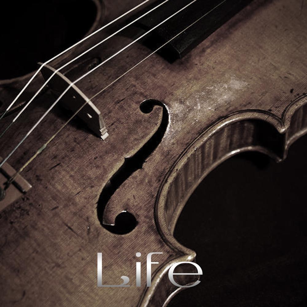 Violin-4_F.jpg