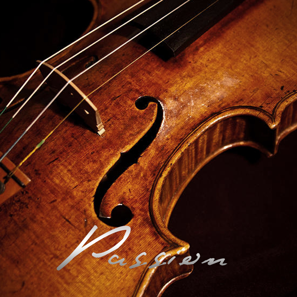 Violin-1_F.jpg
