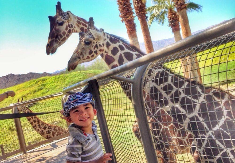 Hotel 360 Resort & Spa by Keller Hotels Zoo.jpg