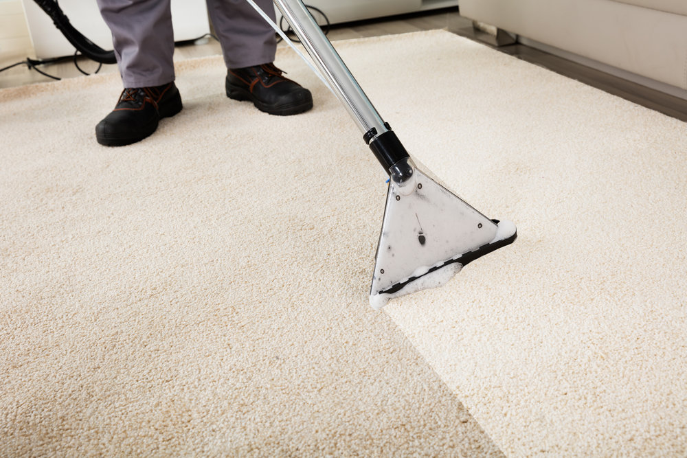 Did you know - Professional cleaning is required to maintain your warranty? It's true! We offer cleaning for all your areas rugs as well as wall to wall installed carpets. Utilizing a hot water extraction method and a, high power, truck mounted system we can give your carpets a deep cleaning that will keep them looking fresh and new throughout their life.