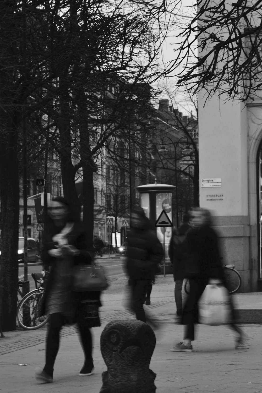 stockholmpictures5.jpeg