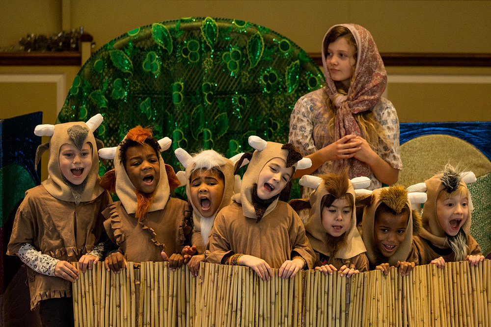 singing goats.jpg
