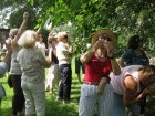 Nursery farm tour
