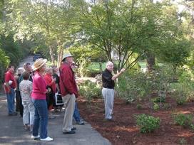 October Adventures and Opportunities - Coach Dooley in his garden, Athens