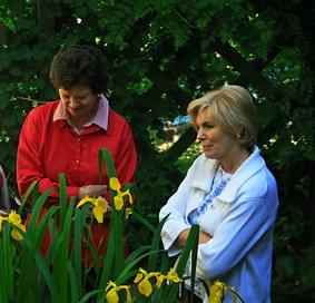 Admiring Iris and water feature at Northcutt Garden