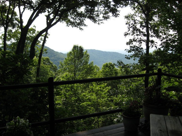 View from Lynda's deck
