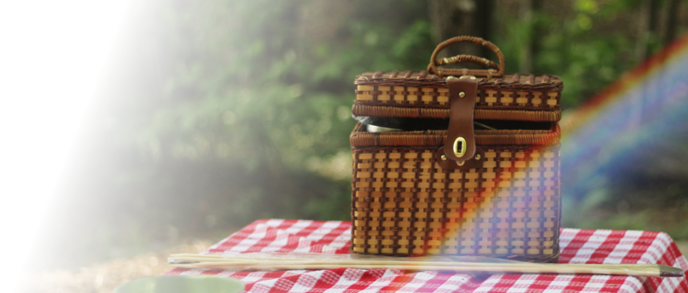 PicnicBannerImage.png
