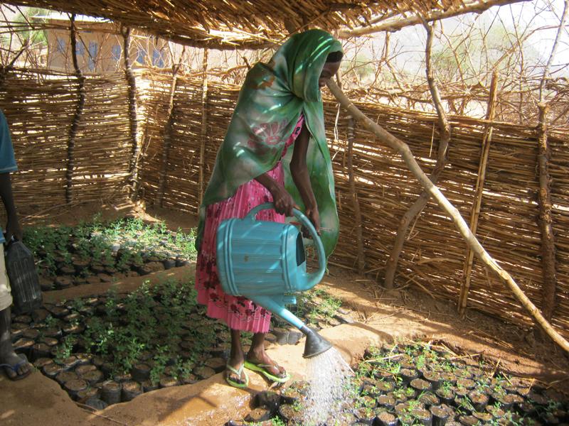 Escuelas para la vida en Chad -
