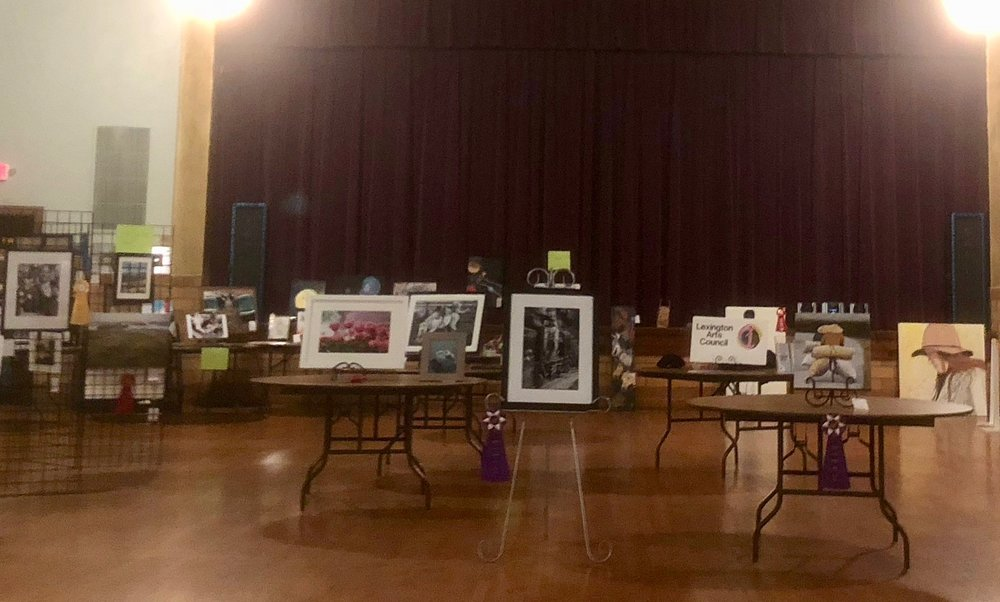 2018 annual art show set up at the LEX Auditorium. The show included over 140 pieces of art in adult and youth categories. - Oct '18