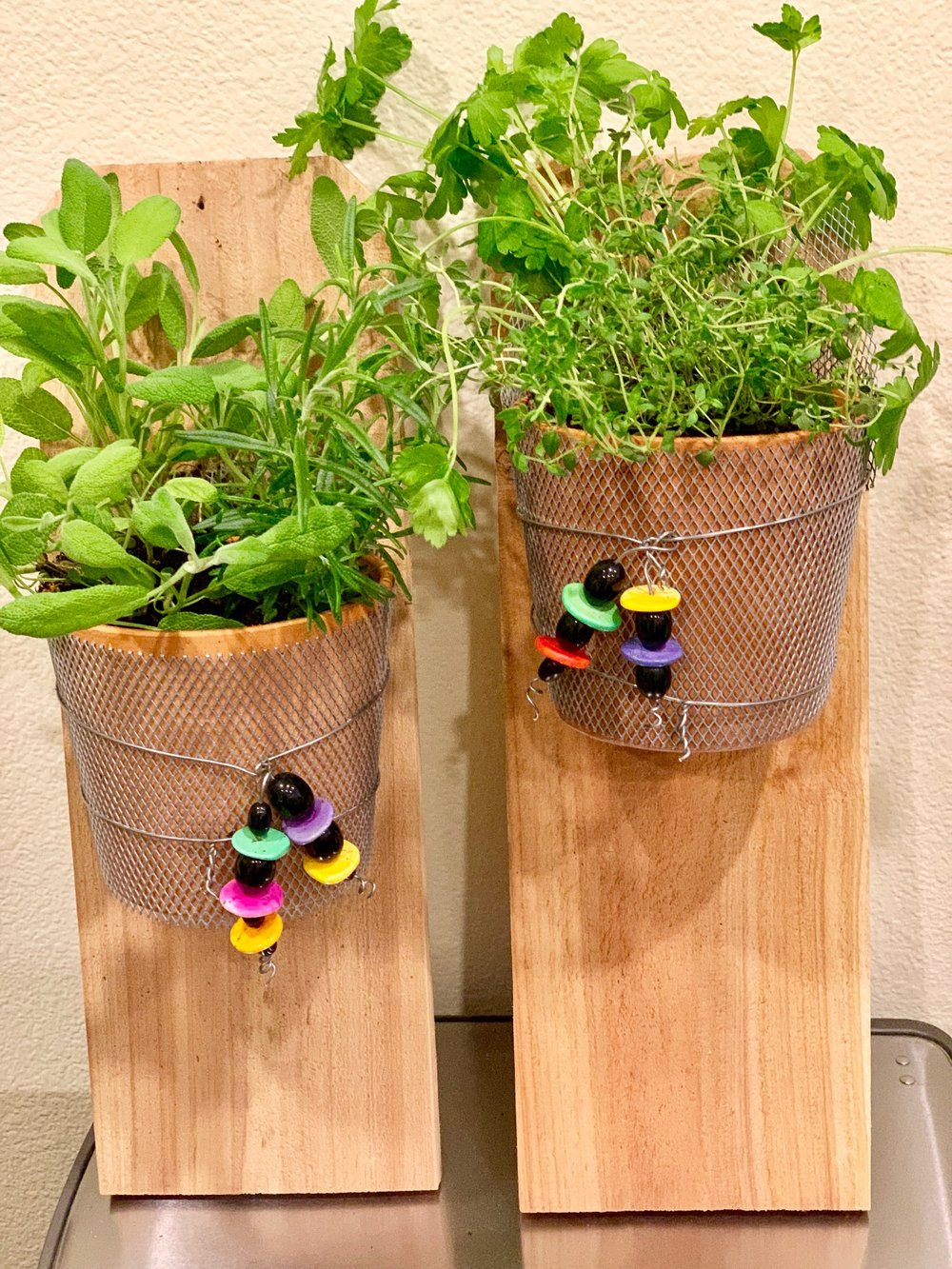 "Fresh Herbs hanging by your kitchen. Using clay pots, wire mesh, beads and wood plank, assemble and plant using selected herbs. Materials include: two 4"" inch clay pots, wire, two wooden planks, beads and four 2"" herbs, soil and top dressing.  Class fee: $60.00"