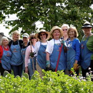 Calling all  Garden Angels ! Help us beautiful our local park gardens. gardens. Meet at the Montanez adobe in front of the Los Rios Park. Bring gloves and signed volunteer forms, no experience needed.   Every Tuesday & Thursday from 8:00-10:30am