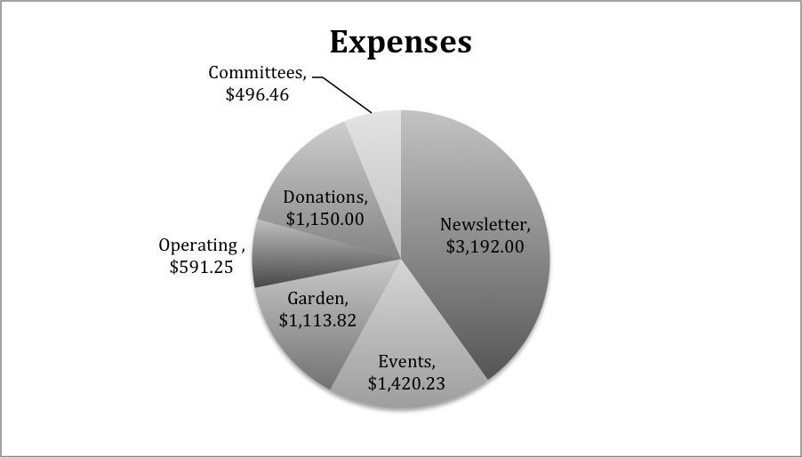 want2013expenses