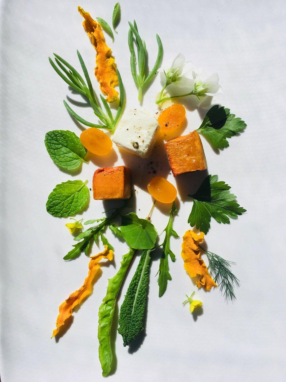 Pickled cumquat salad with roast pumpkin and goats curd