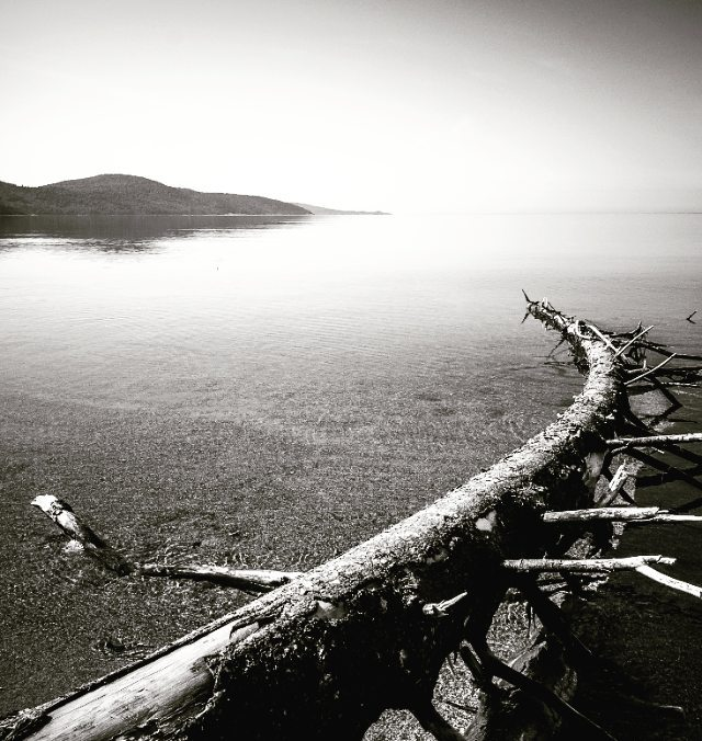 A throw back to one of my trips several years ago. Since then I have never seen Lake Superior so calm. You could see forever into the distance with a perfect reflection. . . . #photography #landscape #ontario #canada #lakesuperior #parkscanada #parks #travelawesome #explorecanada #imagesofcanada #explorecanada #creative #tourcanada #canadaworld #natgeotravel #natgeo #splendidcanada #creativelive #adventureculture #enjoycanada #artofvisuals #discoveron #insidecanada #imagesofcanada