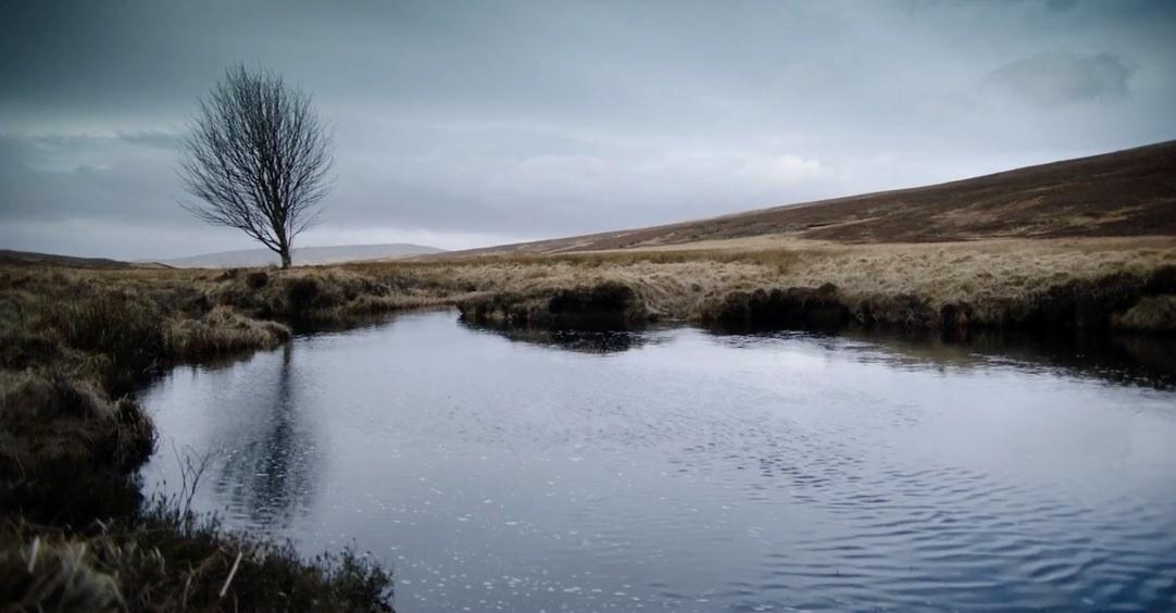 720-landscape.jpg