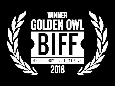 Bergen Intl FF_golden owl.png