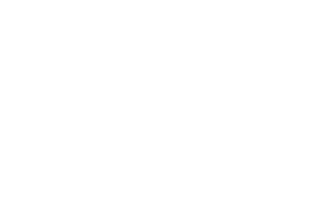 newportfilm_laurel-2018-white.png