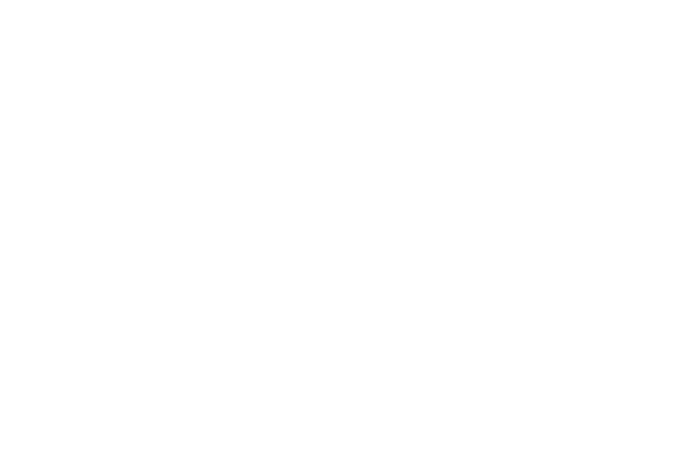OFFICIALSELECTION-TransitionsFilmFestival-2019-2.png