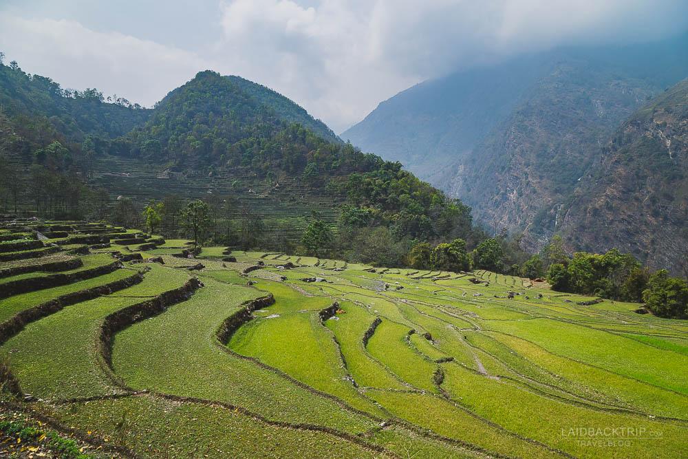 annapurna circuit trekking   bahundanda   rice fields   bhulbule   besisahar to chame   part 1   collage 1   laidback trip