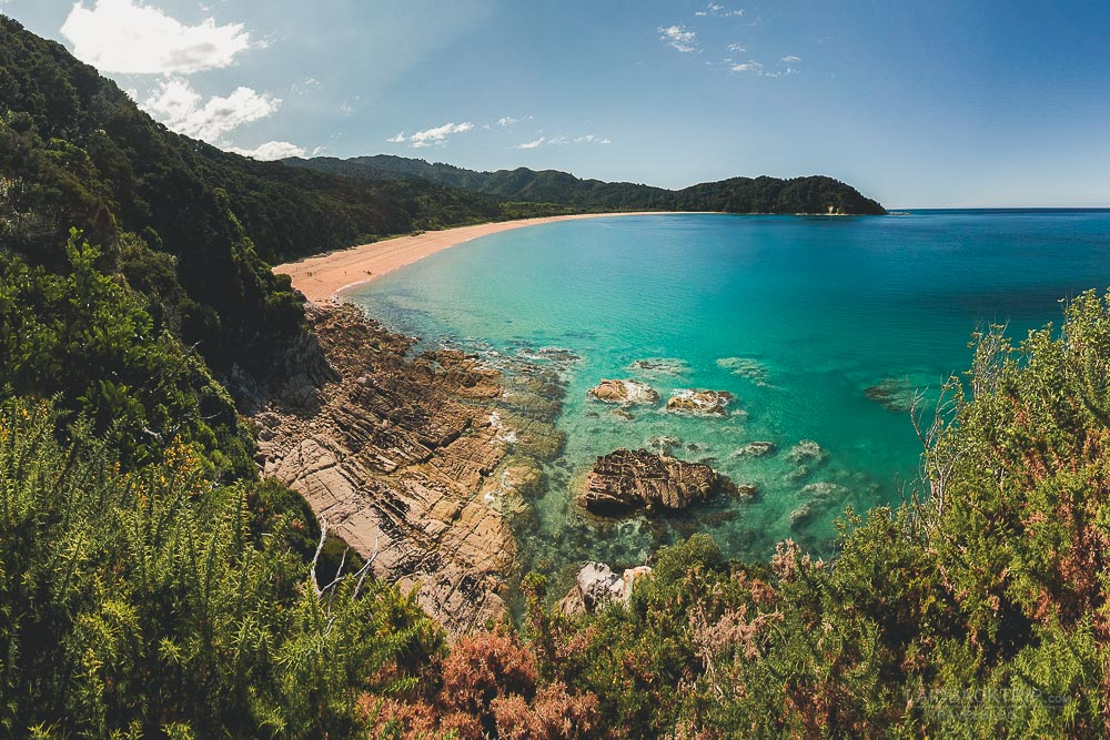 abel tasman coast track | best 5 hikes in new zealand | best treks new zealand | laidback trip