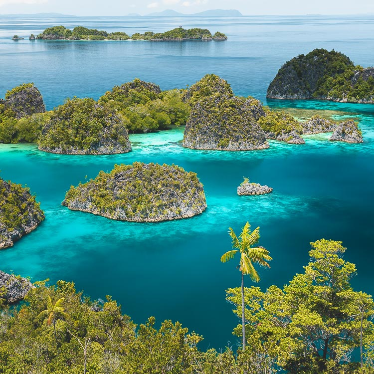 RAJA AMPAT GUIDE - Secret Paradise in Indonesia
