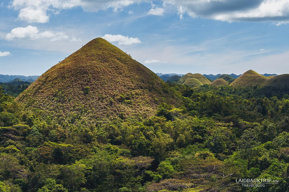 chocolate hills adventure in bohol island | philippines travel guide by LaidBackTrip