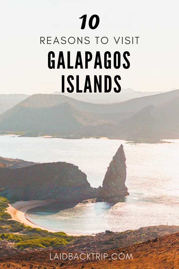 10 Reasons to visit Galapagos Islands
