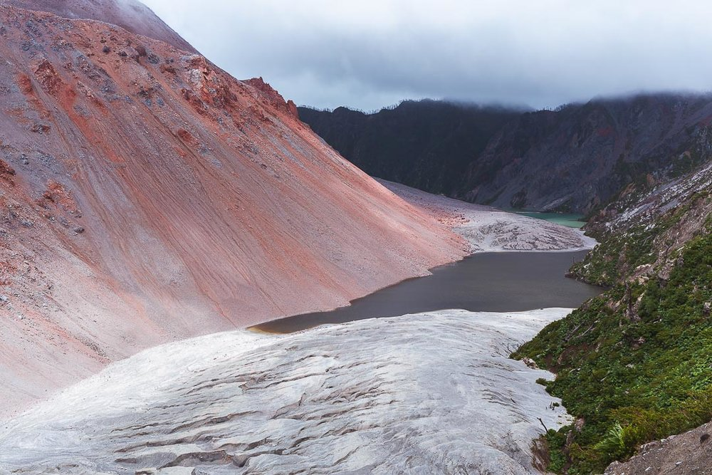 Pumalin National Park is best visited from a small town Chaiten on Carretera Austral