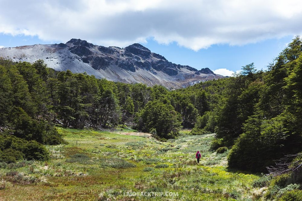 Patagonia National Park is packed with adventures and activities to do.