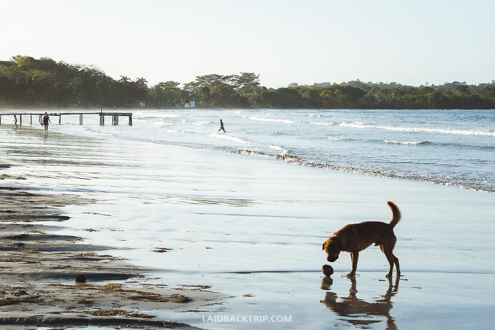 Bocas del Toro is one of the most beautiful places in Panama.