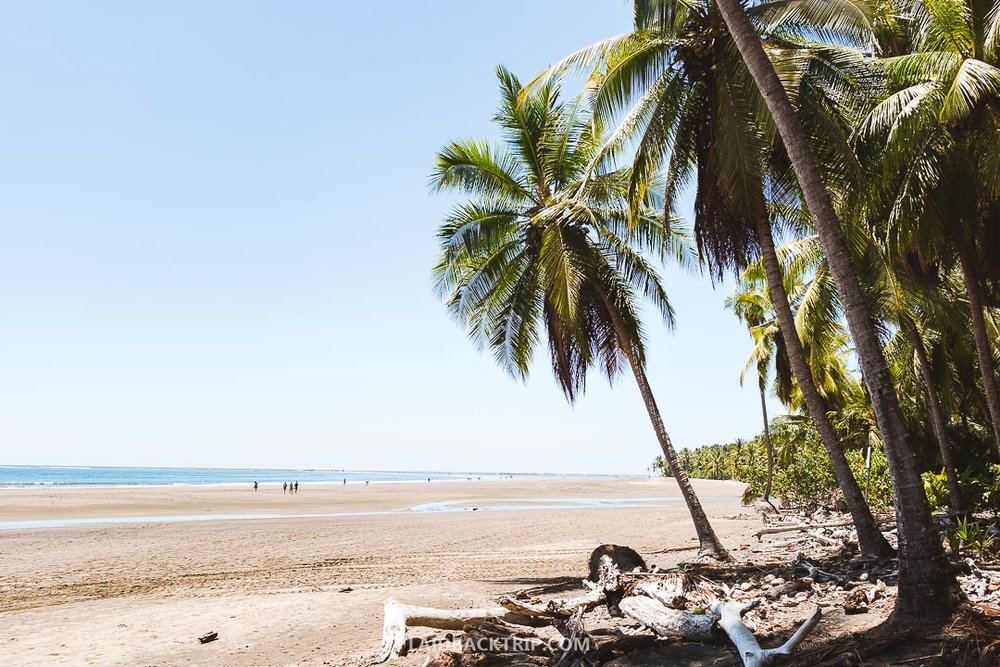 You can visit the Ballena National Park from Uvita, Costa Rica.