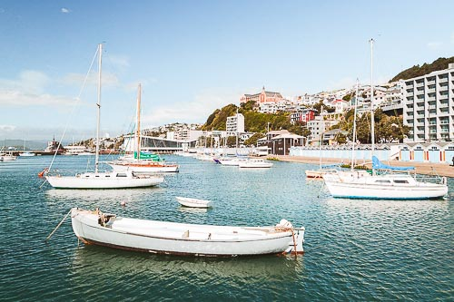 Wellington: Best Things to Do in the Capital of New Zealand