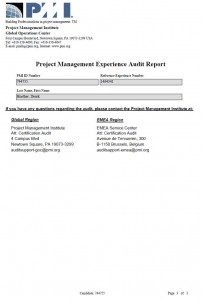 audit_page3